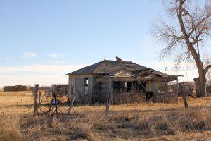 Beet House 1