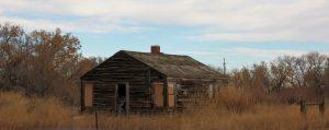 Beet House 3