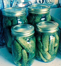 Garlicky Dill Pickles