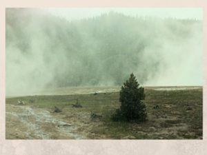 steamy geysers